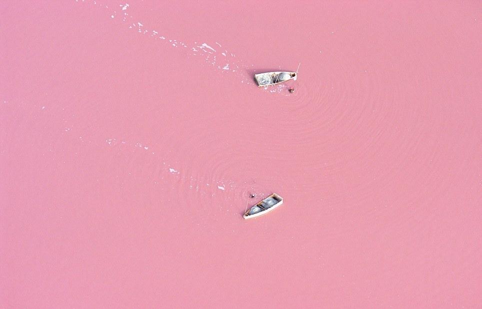розовое изображение: