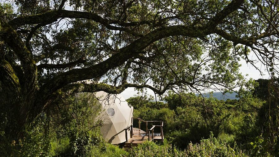 Удивительный сафари-лодж лагерь Хайлендс (The Highlands) в Танзании
