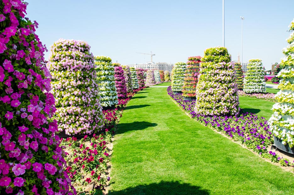 Beautiful flower garden images free stock photos download
