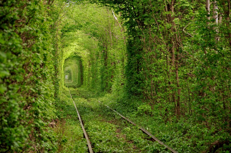 Тоннель любви (Tunnel of Love) Клевань, Ровенская область, Украина