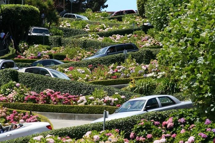 Ломбард-стрит (Lombard Street) - самая извилистая улица в мире, Сан-Франциско, США