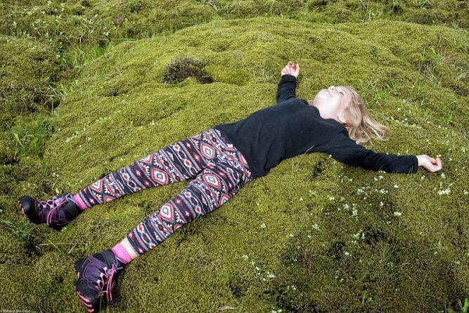 Мох в Исландии, Лавовые поля